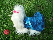 S cute dog dress