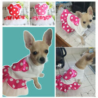 Cute Large L Female Pink Minnie Mouse Dog Dress Poodles Rottweilers Lot Bulk