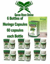 Moringa Capsules Lot of 6x60 Capsules Bottle Dietary Suppelment Cure All Energy