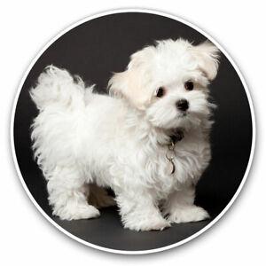 2 x Vinyl Stickers 15cm - Maltese Puppy White Dog Pet  Cool Gift #21834