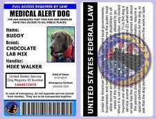 Professional Medical Alert Dog ID Card - ADA Rated -Comes With Registration -1A1
