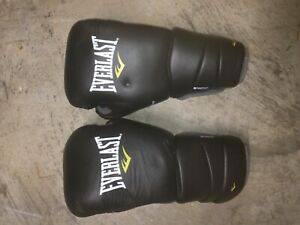 Everlast Protex 3 Foam Boxing Sparring Gloves Black w/Fitness Bag 16oz L/XL