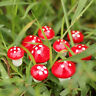 30x Resin Mushroom Toadstool Garden Ornaments Gnomes Potted Plants Decoration