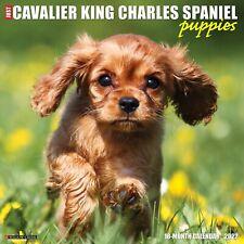 Just Cavalier King Charles Spaniel Pups 2022 Wall Calendar (Dog Breed Free Ship)
