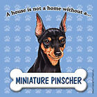 Miniature Pinscher Magnet - House Is Not A Home
