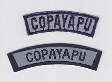 ASOCIACION DE GUIAS Y SCOUTS DE CHILE - CHILEAN COPAYAPU SCOUT PATCH (2 VAR)