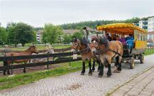 kleine Auszeit in den Harz Urlaub mit ALL INKLUSIVE 4 Tage