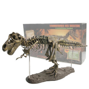 Large 4D T Rex Tyrannosaurus Dinosaur Assembled Skeleton Fossil Model Decoration