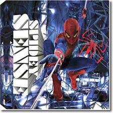 Spiderman Canvas Art and Sticker Set