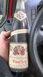 Wein Pinot Noir 1976