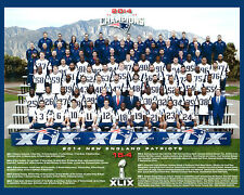 New England Patriots - 2014 Superbowl Champions, 8x10 Color Team Photo