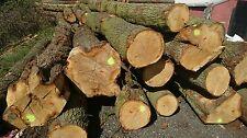 Green English Oak Beams - Quality Superior to European Oak