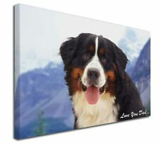 More details for bernese 'love you dad' x-large 30