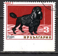 1964 - Bulgaria Error Dogs Poodle dog  imperforated below  CTO original gum
