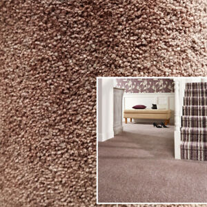Clearance   Quality Saxony Soft Luxury Brown Carpet Action Backed Cheap Carpets