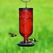 Perky-Pet Antique Glass Bottle Hummingbird Feeder 16 Ounce 8109-2 Red MP