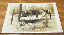 1945 Real Photo Postcard/Los Angeles Ostrich Farm, Boy Pushing Ostrich Eggs