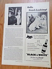 1949 Black White Scottish Scotty Terrier Westie Ad Hello Good-Looking