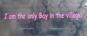 I am the Only Bay in the Village .. Funny Sticker For Volkswagen Camper Van Bus