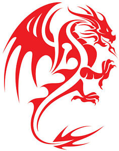 LARGE car van bonnet sticker red tribal dragon vinyl graphic decal side wall art
