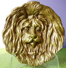 Rare vide poche bronze tête portrait de caniche bichon Maltais chien animal