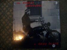 THE EMBRYO SURVEYORS---A GRAY FLASH    VINYL ALBUM
