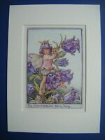 Vtg FLOWER FAIRIES PRINT & MOUNT Canterbury Bell Fairy CICELY M BARKER c1930's