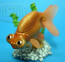 金魚 原色鑑賞魚圖鑑Yujin goldfish aquarium fish in colour Carassius auratus Celestial Eye