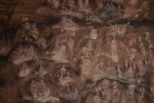 Walnut Burl Raw Wood Veneer Sheet 13.5 x 16 inches 1/42nd 4730-27