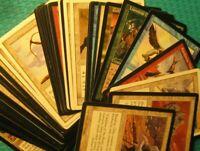 50 Soldier Cards Magic Lot, LP-HP, Tribal EDH Commander Creature Type Unique