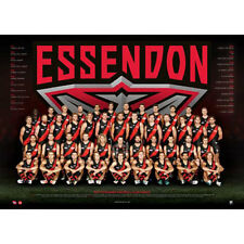 AFL 2017 Team ESSENDON Bombers Poster 60x80cm Aussie Football League Players