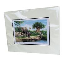 Disney Animal Kingdom Tufani's  1St Birthday by Larry Dotson Signed Print 2004