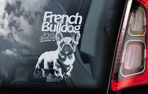 FRENCH BULLDOG Car Sticker, Bouledogue Dog Pet Window Sign Bumper Decal Gift V04