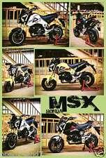 "HONDA ""MSX MOTORCYCLE - 6 MODELS"" POSTER - Japanese Motorbikes (#J-4646)"
