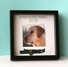 Personalised Pet Photo Picture Frame Dog Collar Memory Bereavement Remembrance B