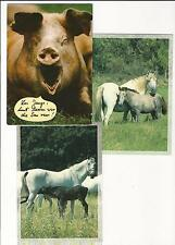 5/491 AK maiale scrofa 2 x Cavallo zikadelle Spandau FRANCOBOLLO GEL. Chemnitz 1994