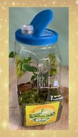 Lite-Up Mantis Habitat--Well vented--Convenient Handle--Bright light New Design