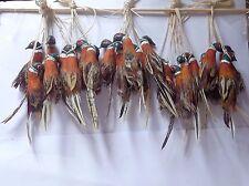 1:12 Scale One Hanging Pheasant Dolls House Miniature Game Bird (One Bird)
