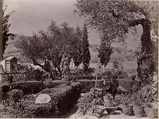 Jérusalem Israël Palestine Photo Albumine Tirage vers 1890 petit format