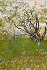 Vincent Van Gogh Flowering Orchard 1888 Art Print Poster 24x36 inch