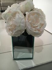 New Unwanted Mirror Vase from Myer or use as makeup holder