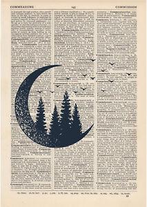 Moon Forest Dictionary Art Print, Double exposure travel Vintage wanderlust