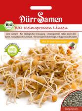 4407 Dürr BIO Keimsprossen Linsen ca.75g delikater nussartiger Geschmack Samen
