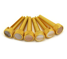 D'Andrea Tone Pins Abalone & Brass Acoustic Guitar Bridge Pin Set TP2A