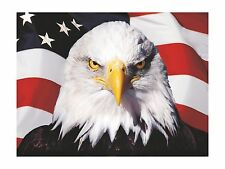 Sticker Eagle usa Patriot America for Tablet Laptop PC