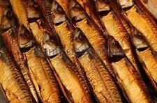 1kg Makrele Heilbutt Räucherfisch Aal Lachs Forelle  Fische