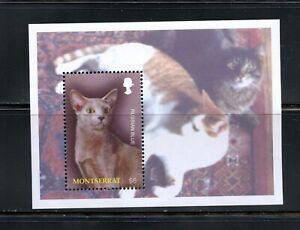 C614 Montserrat 2004 Chats Feuille MNH