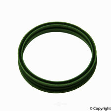 Fuel Pump Seal-Reinz WD Express 225 33145 071