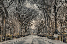 CENTRAL PARK IN WINTER - NEW YORK CITY POSTER 24x36 - ASSAF SCENIC NYC 34196