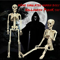 """40cm/15.7"""" Poseable Human Skeleton Halloween Decoration Party Yard Prop Supply"""